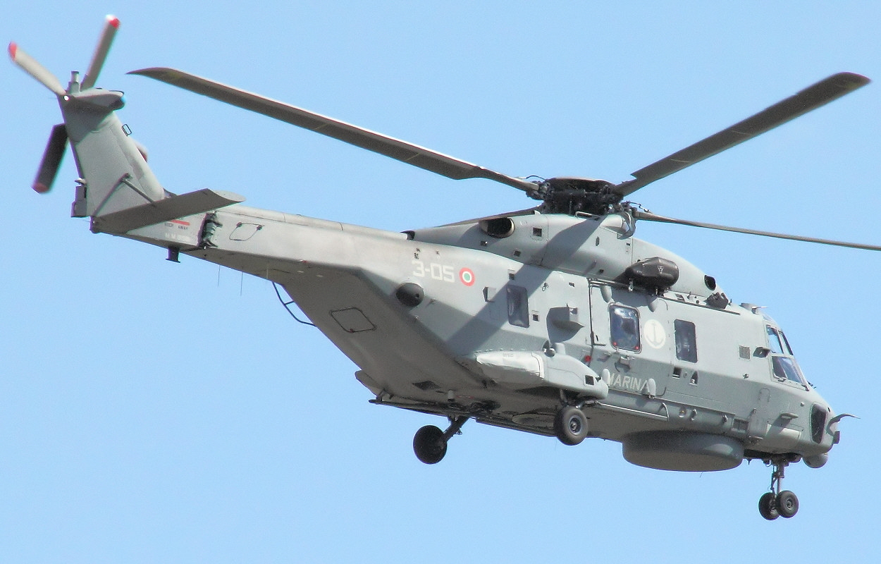NH90 NTH Sea Lion - Überflug